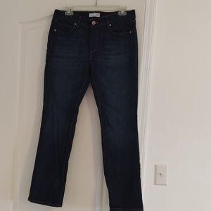 Loft Modern Straight Jeans 31 12